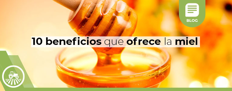 10 beneficios de la miel