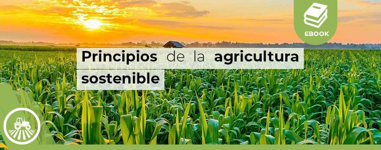 5 principios de la agricultura sostenible