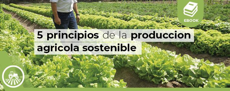 5 principios de la produccion agricola sostenible