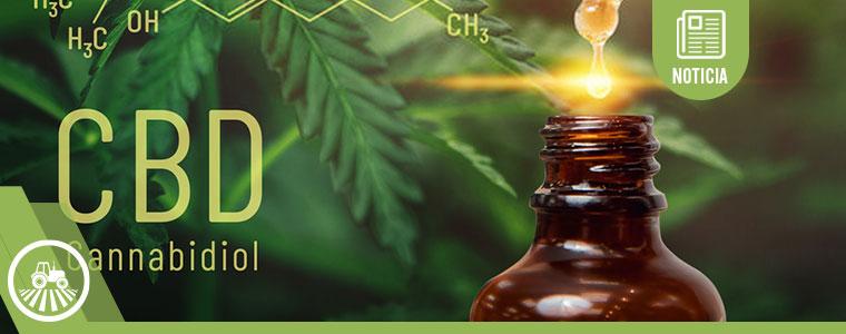 Los negocios más rentables de la industria del cannabis