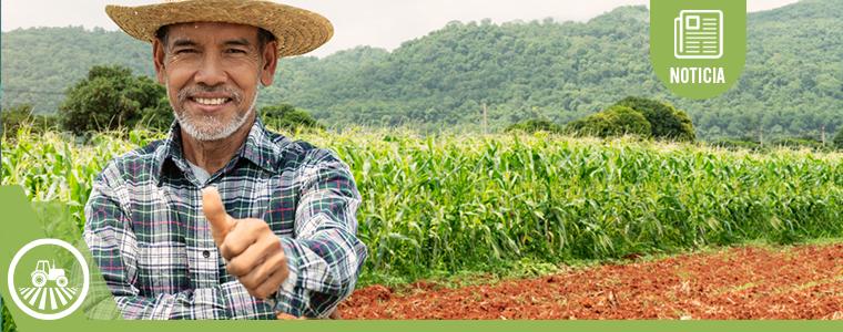 Áreas del derecho agrario
