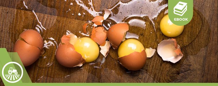 huevos rotos de baja calidad