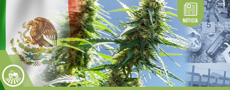 México despenaliza el consumo recreativo del cannabis